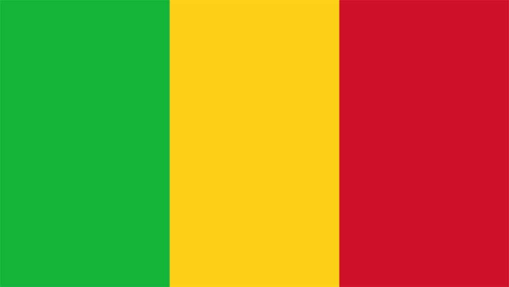 Dịch vụ chuyển phát nhanh đi Mali giá rẻ tại Sài Gòn Bay