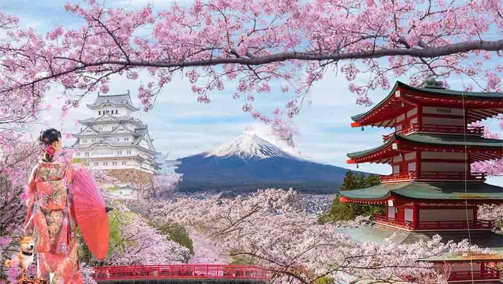 Dịch vụ chuyển phát nhanh quốc tế đi Nhật Bản uy tín