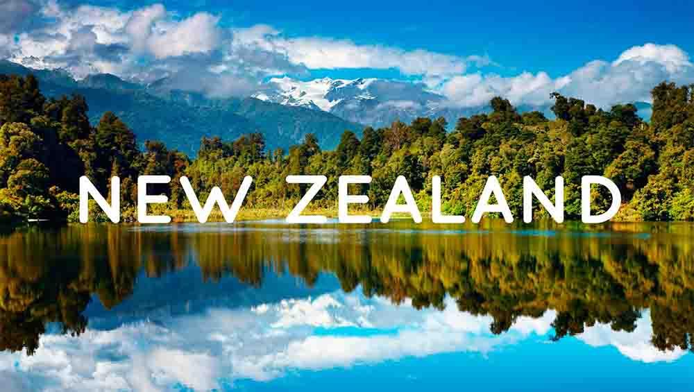 Dịch vụ vận chuyển hàng hóa đi New Zealand uy tín